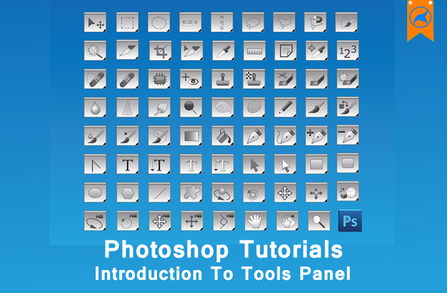 photoshop beginner 3