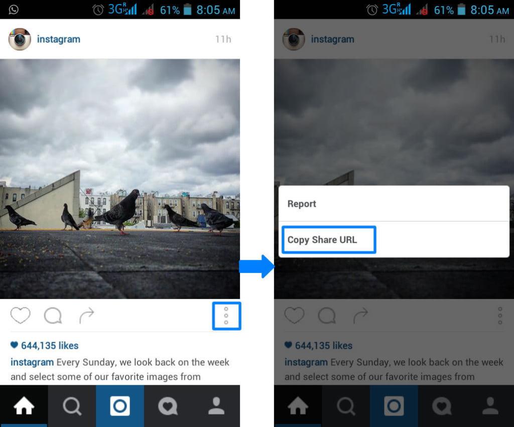 download instagram images and videos 1 [TechLog360.com]