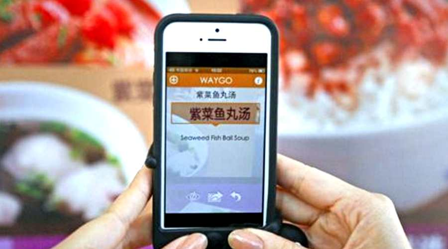 Waygo - Best translation apps for Android and iOS