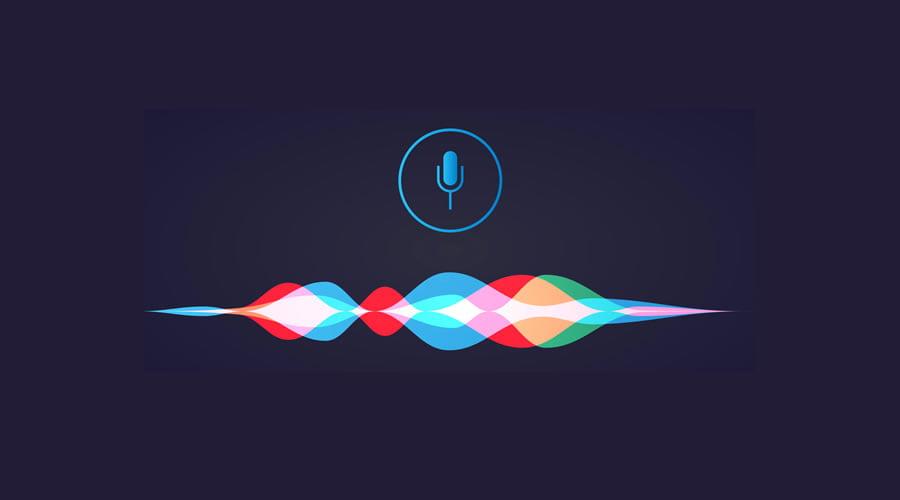 Siri or Google or Alexa