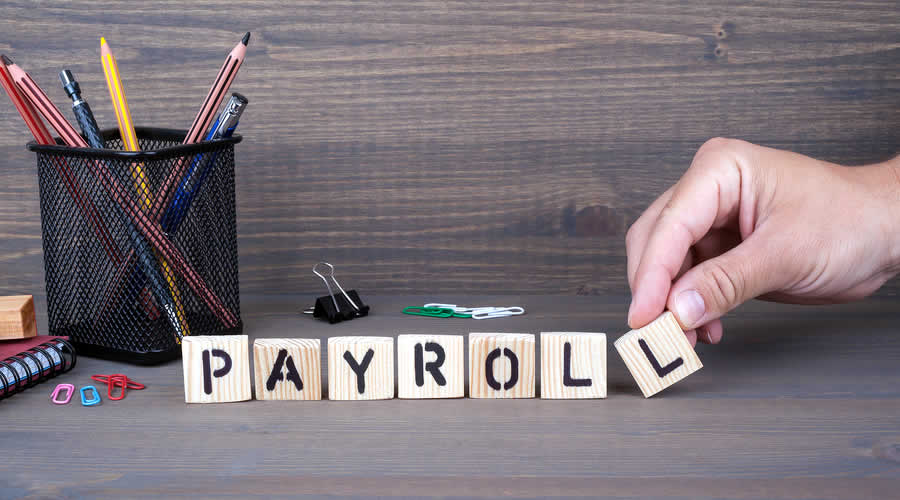 Professional Payroll